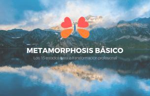 Metamorphosis Básico